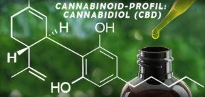 CBD Cannabidiol