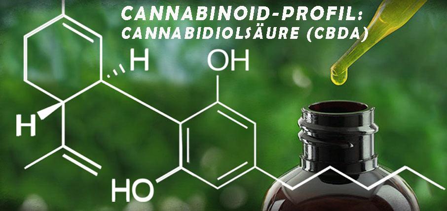 Cannabinoid-Profil: Cannabidiolsäure (CBDa). Alles was Sie wissen sollen!