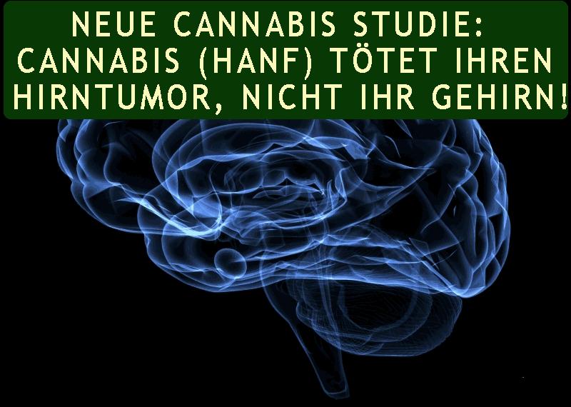 Neue Cannabis Studie: Cannabis (Hanf) Tötet Ihren Hirntumor, NICHT Ihr Gehirn!