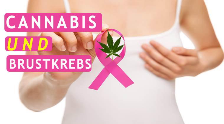 Medizinisches Cannabis Und Die Behandlung Von Brustkrebs