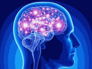 welches cbd öl bei epilepsie