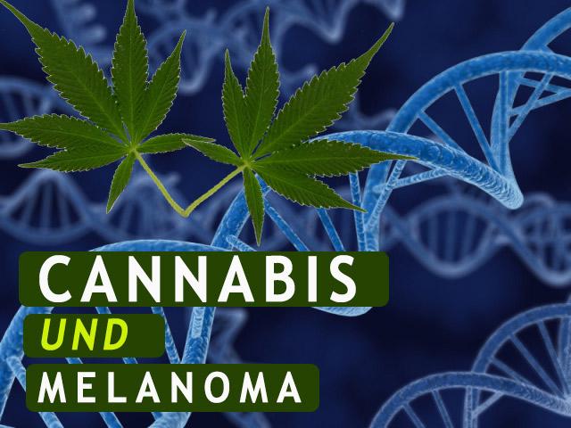 Medizinisches Cannabis Und Die Behandlung Von Hautkrebs (Melanoma)