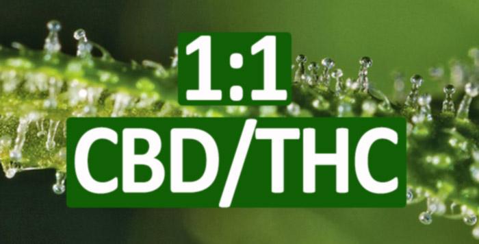 1:1 Ratio THC/CBD