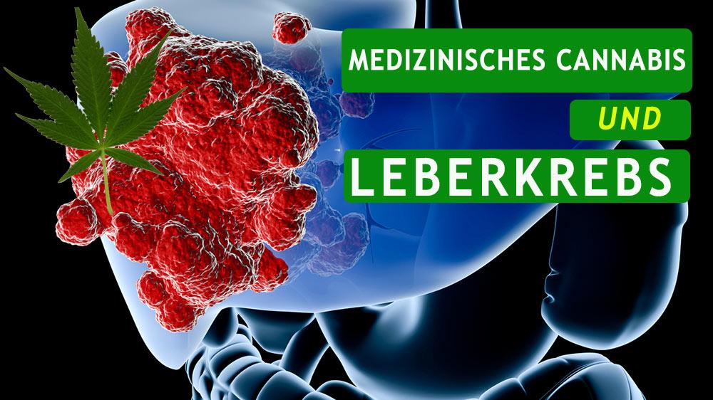 Cannabis und Leberkrebs
